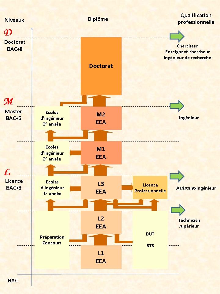 Formations EEA